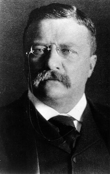 US President「Theodore Roosevelt...」:写真・画像(17)[壁紙.com]
