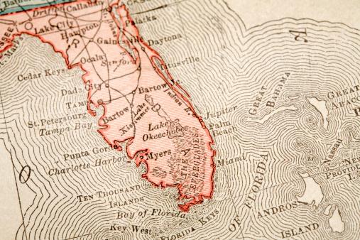 Gulf of Mexico「Miami」:スマホ壁紙(18)