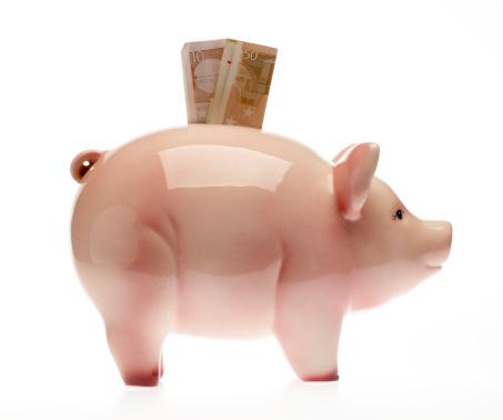 Stuffed「Piggybank with Euro bills」:スマホ壁紙(16)
