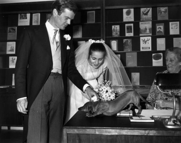 Wedding Reception「Man's Best Friend」:写真・画像(9)[壁紙.com]