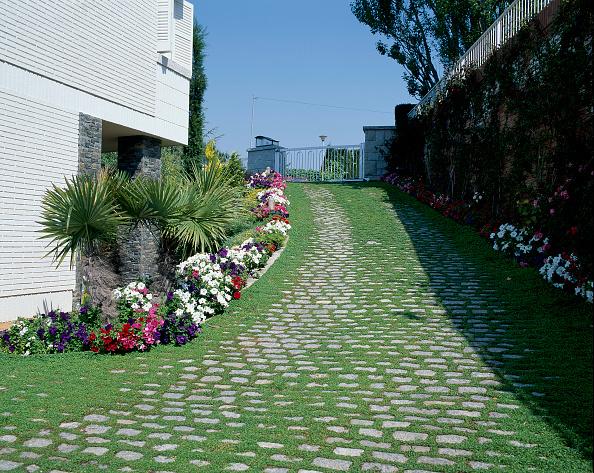 葉・植物「A sloping walkway is well landscaped」:写真・画像(7)[壁紙.com]