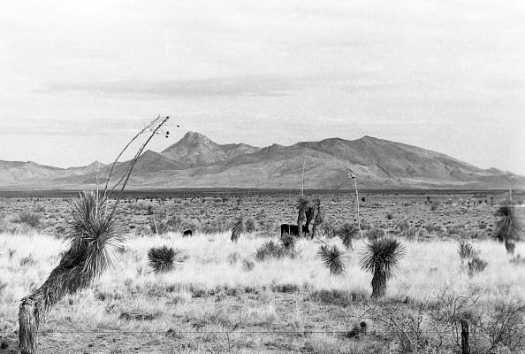 Horizon「New Mexico」:写真・画像(7)[壁紙.com]
