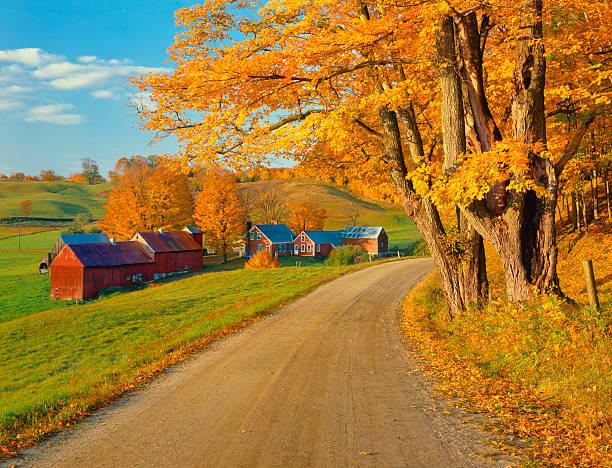 Dirt Vermont road during autumn:スマホ壁紙(壁紙.com)