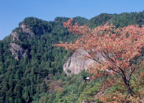 Temple「Houraiji Temple, Shinjo, Aichi, Japan」:スマホ壁紙(5)