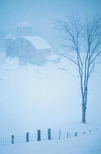 Wooden Post「Barns In Winter Landscape」:スマホ壁紙(4)