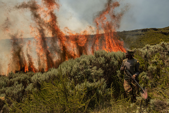 Bestof「Mt. Kenya Fire Burns Amid Dry Weather」:写真・画像(6)[壁紙.com]