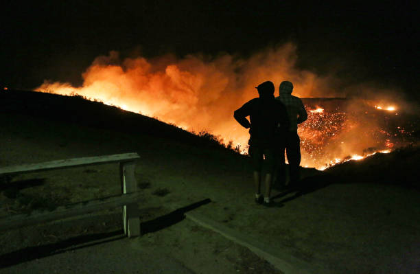 カリフォルニア州「Southern California Wildfires Forces Thousands to Evacuate」:写真・画像(17)[壁紙.com]
