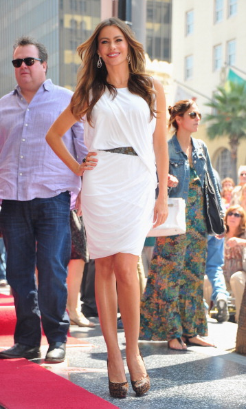 Form Fitted Dress「Ed O'Neill Honored On The Hollywood Walk Of Fame」:写真・画像(8)[壁紙.com]