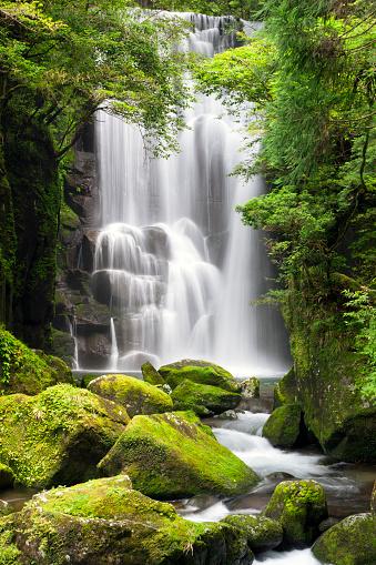 July「Kuwanoki Falls」:スマホ壁紙(12)