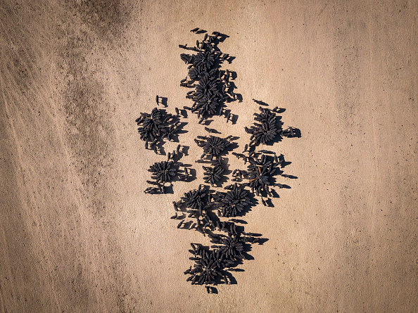 Aerial View「New South Wales Farmers Battle Crippling Drought」:写真・画像(13)[壁紙.com]