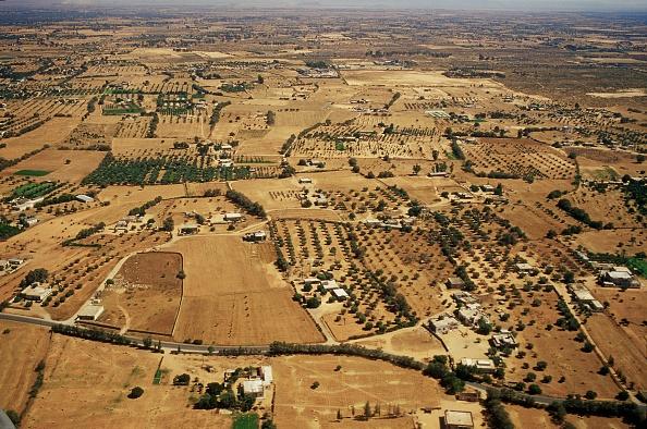 Farm「Golden Water In The Desert」:写真・画像(7)[壁紙.com]