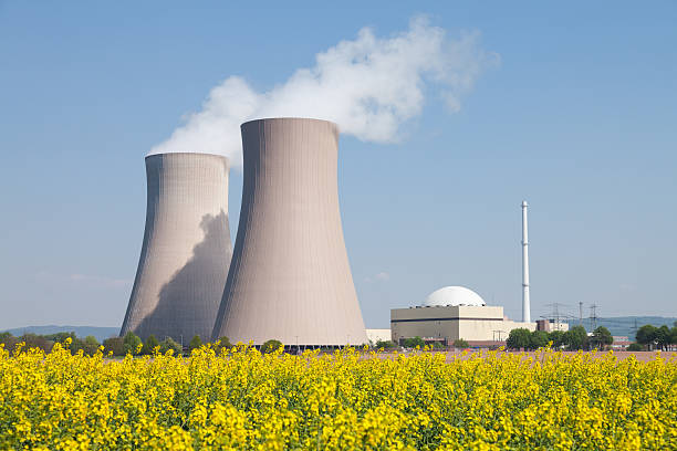 Nuclear power station with steaming cooling towers and canola field:スマホ壁紙(壁紙.com)