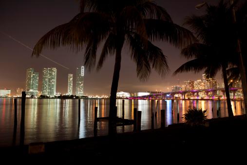 Miami Beach「マイアミフロリダの夜の街並み」:スマホ壁紙(1)