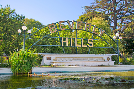 Water Lily「Beverly Hills Sign」:スマホ壁紙(10)