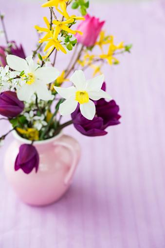 梅の花「Bunch of spring flowers」:スマホ壁紙(9)