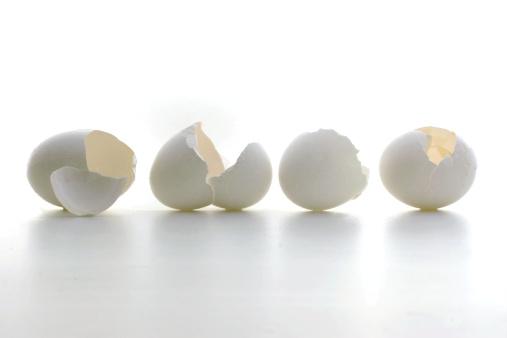 殻「Eggshell Stilllife」:スマホ壁紙(10)