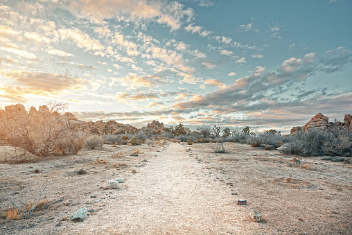 Dramatic Landscape「Desert path at sunset」:スマホ壁紙(3)