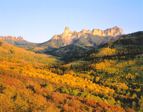 Uncompahgre National Forest「Brilliantly colored valley of aspen and Gambles oak sits in front of Cimarron Ridge, Courthouse Mountain, and Chimney Rock in autumn. Cimarron Ridge, Courthouse Mountain, Chimney Rock, Uncompahgre National Forest, Colorado.」:スマホ壁紙(10)