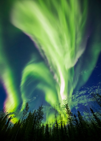 星空「The aurora borealis goes wild in an unusually bright late summer display」:スマホ壁紙(17)