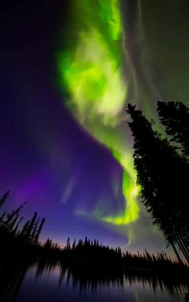 The aurora borealis explodes in the sky above the Clearwater River in Delta Junction shortly before sunrise:スマホ壁紙(壁紙.com)