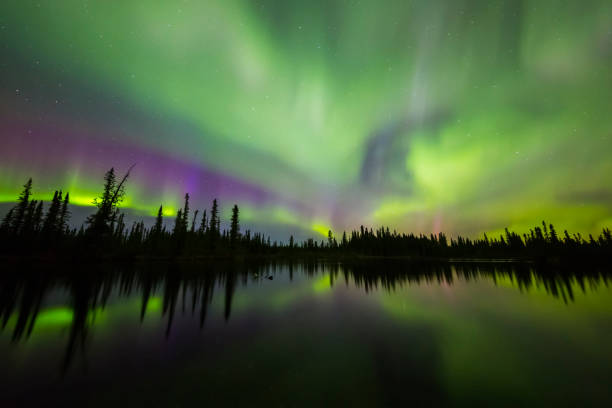The aurora borealis fills the sky above the Clearwater River in Delta Junction:スマホ壁紙(壁紙.com)