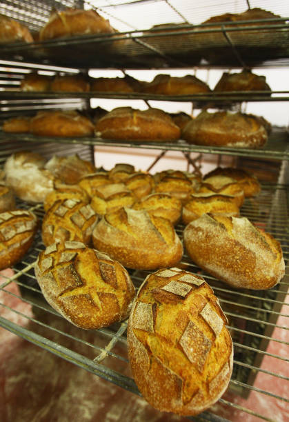 Bakeries Feel The Pinch With Rising Costs Of Wheat:ニュース(壁紙.com)