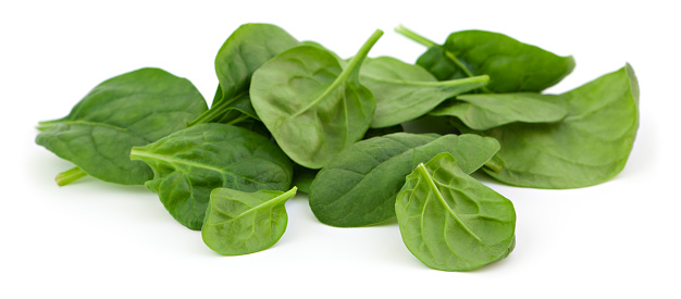 Spinach「Baby spinach」:スマホ壁紙(9)
