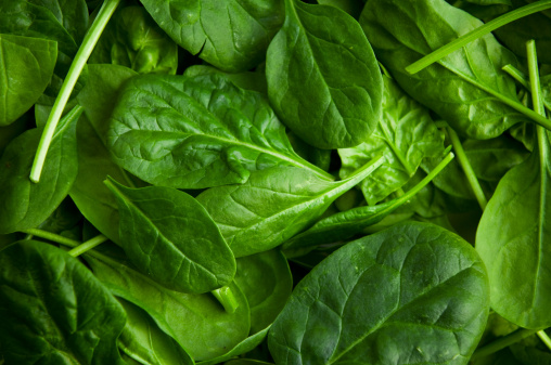 Leaf Vegetable「Baby Spinach」:スマホ壁紙(4)