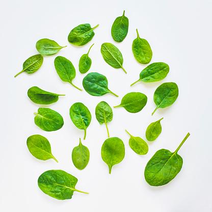 Spinach「Baby spinach」:スマホ壁紙(5)