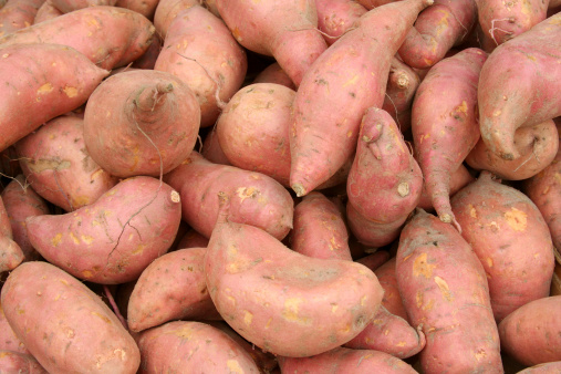 Sweet Potato「Fresh Sweet Potatoes Yams」:スマホ壁紙(16)