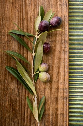 Olive Branch「Olive Branch Still Life」:スマホ壁紙(13)
