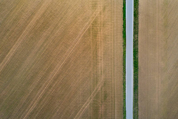 Road from above through agricultural fields:スマホ壁紙(壁紙.com)