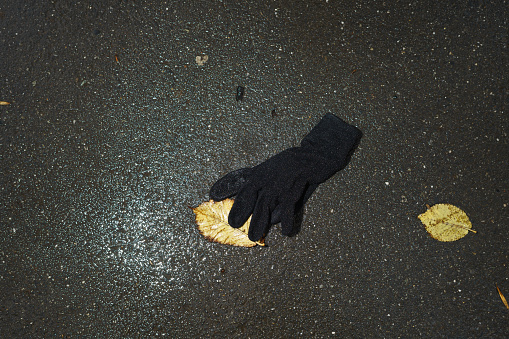 Lost「Lost glove on the pavement」:スマホ壁紙(15)