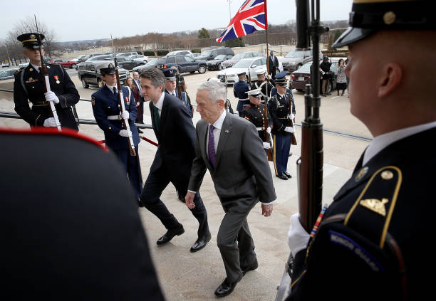 Virginia - US State「Defense Secretary Mattis Hosts UK Counterpart Gavin Williamson At The Pentagon」:写真・画像(17)[壁紙.com]