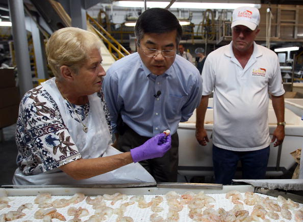 Aquatic Organism「Commerce Secretary Locke Visits Gulf To Inspect State Of Seafood Industry」:写真・画像(11)[壁紙.com]