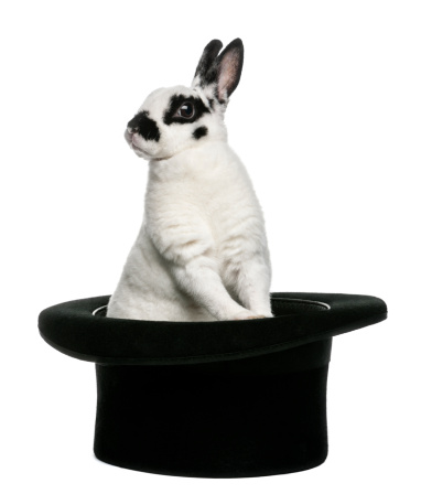 シルクハット「Dalmatian Rabbit standing in a top hat」:スマホ壁紙(15)