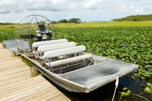 Indigenous Culture「Everglades Swamp Motorboat」:スマホ壁紙(7)