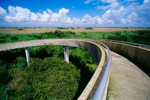 World Heritage「Everglades National Park, Florida, USA」:スマホ壁紙(19)