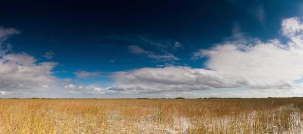 International Biosphere Reserves「Everglades National Park panorama Florida」:スマホ壁紙(12)
