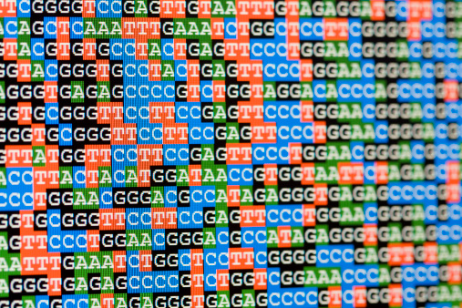 Continuity「Unaligned DNA sequences viewed on LCD screen」:スマホ壁紙(0)