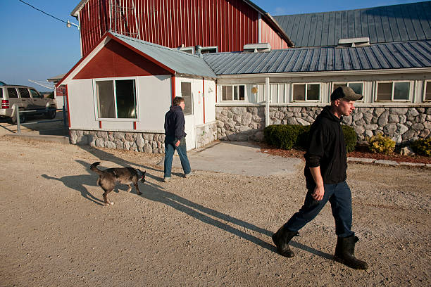 U.S. Dairy Farming Still A Struggle Despite Rise In Milk Prices:ニュース(壁紙.com)
