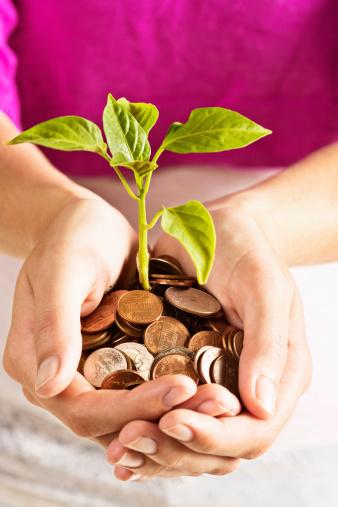 趣味・暮らし「投資費用で成長すること。 種まき用に囲まれた硬貨」:スマホ壁紙(6)