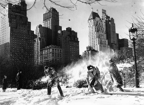 雪「First Snowfall Fight」:写真・画像(14)[壁紙.com]
