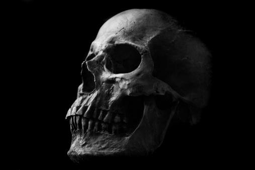 ドクロ「Skull」:スマホ壁紙(15)