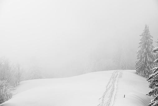 グルノーブル「Winter lanscape」:スマホ壁紙(18)