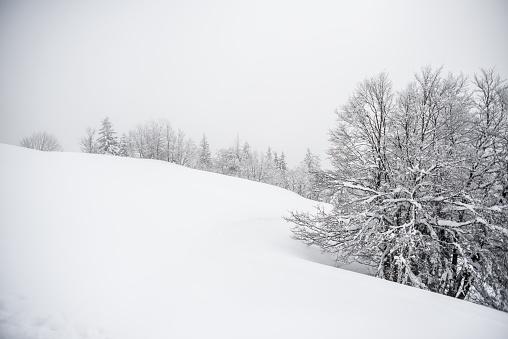 グルノーブル「Winter lanscape」:スマホ壁紙(19)