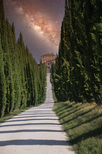 Milky Way「Cypress Lined Road at Night in Italy」:スマホ壁紙(12)