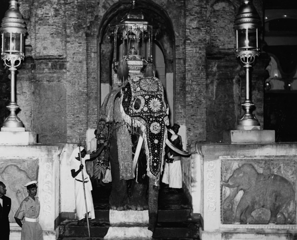 Sri Lanka「Royal Commonwealth Tour 1954」:写真・画像(18)[壁紙.com]