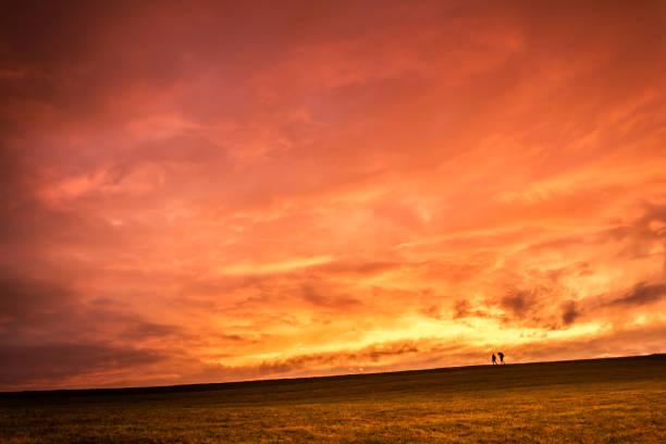 Austria, Upper Austria, walker on meadow at sunset:スマホ壁紙(壁紙.com)
