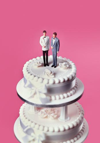 Equality「Gay civil partnerships wedding cake」:スマホ壁紙(8)